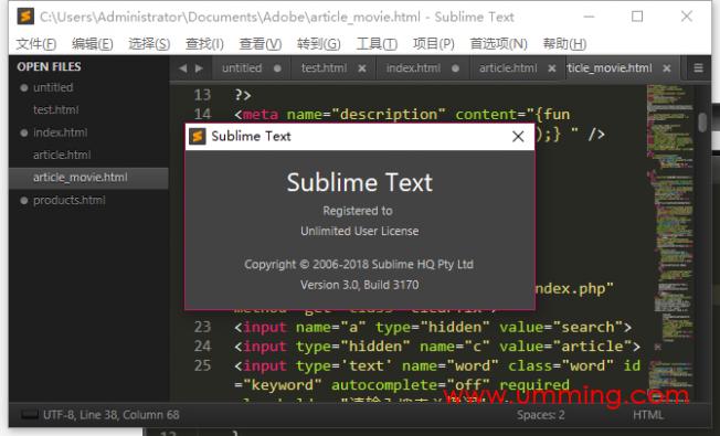Sublime Text 3 v3.3170 绿色汉化特别版