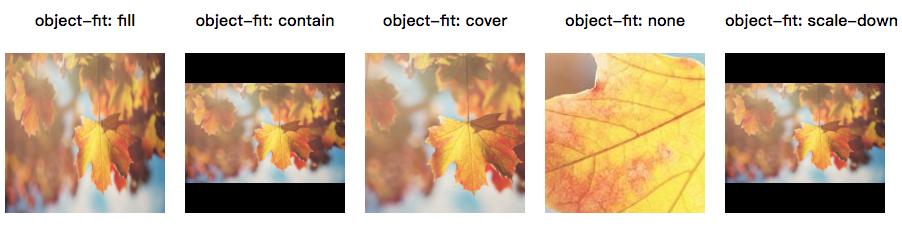 img图片自适应object-fit属性如何使用